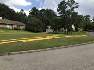 yellow pipes in Elkins Lake